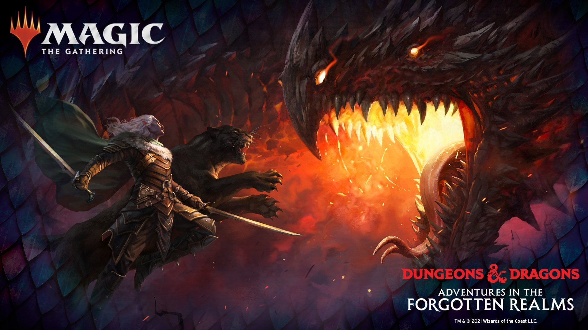 Read more about the article We are getting into the dungeon!